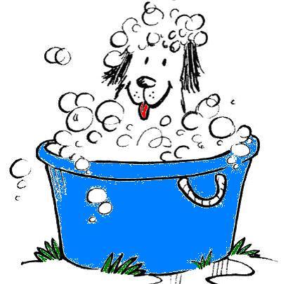 Self Dog Wash